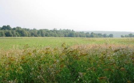 Земельный участок 670 соток