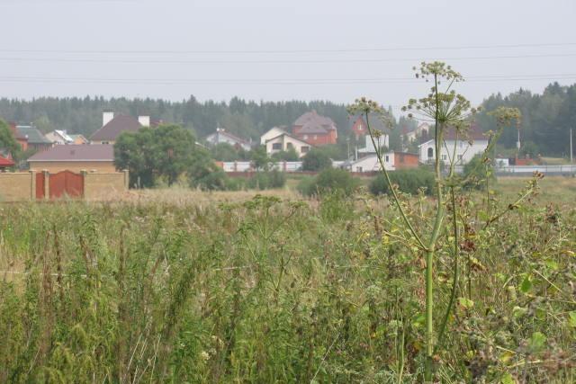 Земельный участок 50 соток