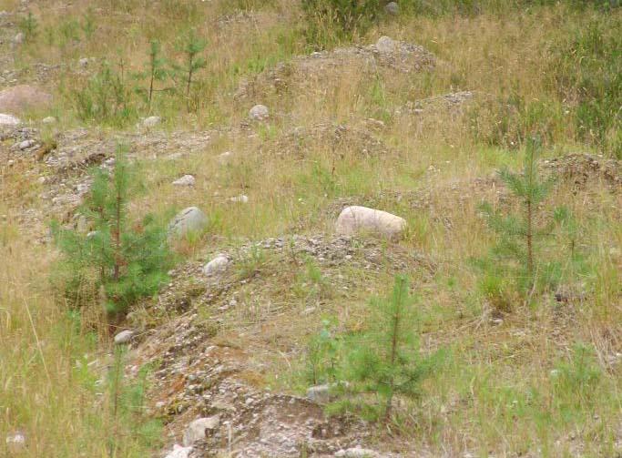 Земельный участок 12.5 соток