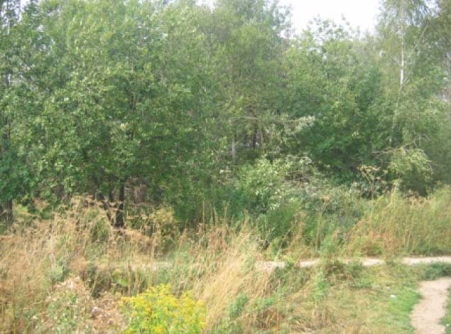 Земельный участок 9 соток