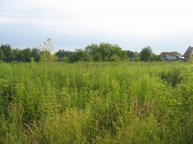 Земельный участок 7.5 соток