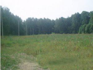 Земельный участок 250 соток