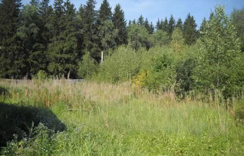 Земельный участок 21 соток