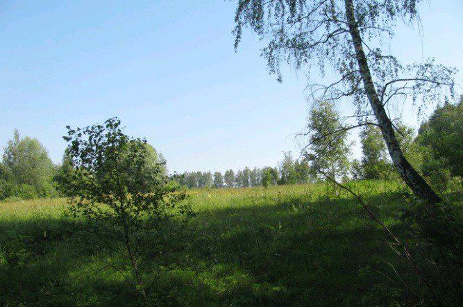 Земельный участок 900 соток