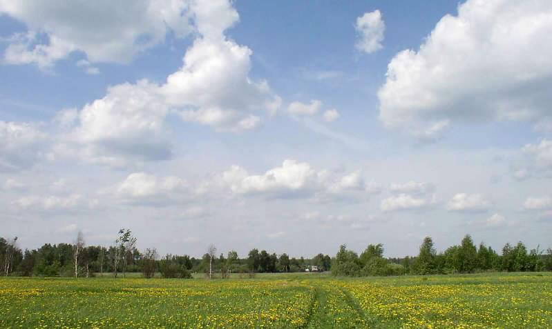 Земельный участок 300 соток