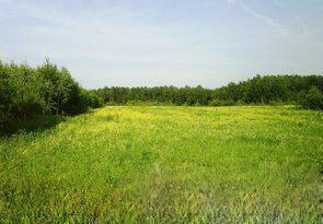 Земельный участок 14,5 соток