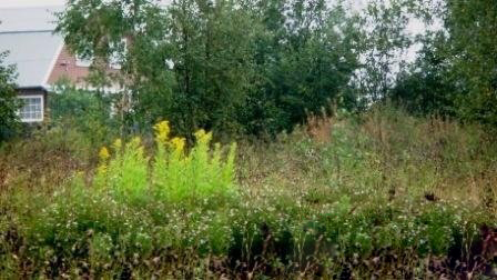 Земельный участок 7,5 соток