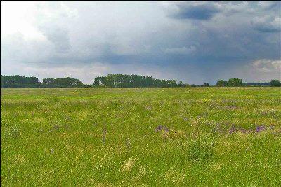 Земельный участок 15 гектаров