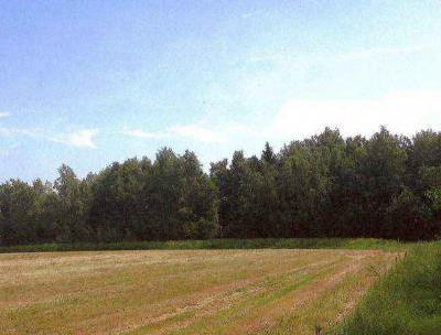 Земельный участок 29 гектар