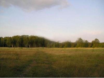 Земельный участок 30 га