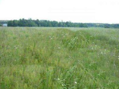 Земельный участок 26 га