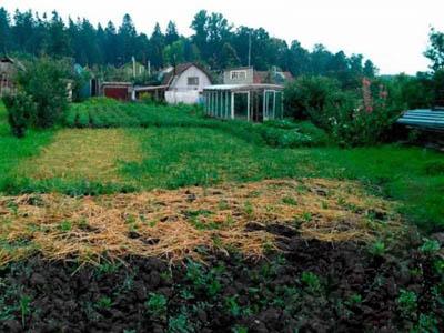 Земельный участок 14.5 соток