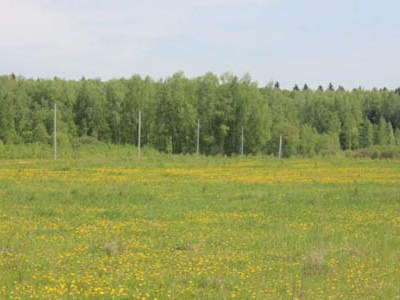 Земельный участок 40 соток