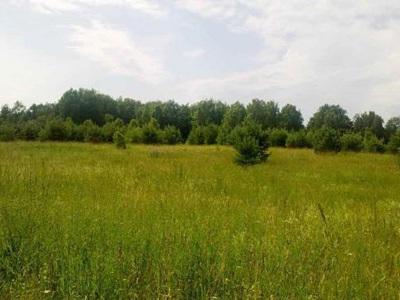 Земельный участок 1640 соток