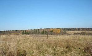 Земельный участок 11,5 сотка