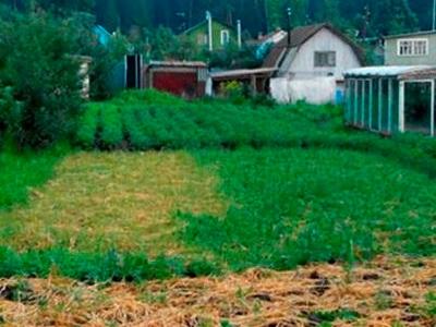 Земельный участок 31 соток