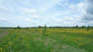 Земельный участок 740 соток