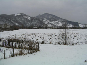 Купили земельный участок зимой. Можно ли начинать строительство?
