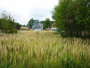 Купить земельный участок под строительство в Ногинске