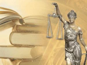 Помощь юриста при покупке или разделе земельного участка