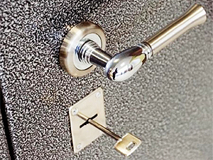 Металлические двери для квартир и загородной недвижимости