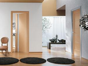 Какие двери выбрать для коттеджа - металлические или стеклянные?