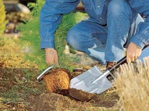 Штыковая лопата для использования на земельных участках