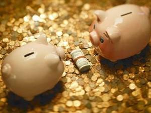 Куда вложить деньги в 2013 году?