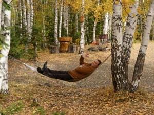 Организовать комфортный отдых в загородном доме поможет avking.ru