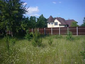 Земельные участки в поселке Щепкин (Ростовская область)