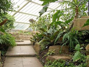 Проектирование зимнего сада в загородном доме