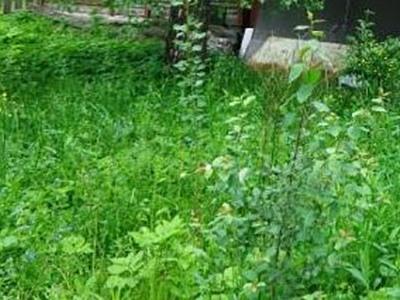 Земельный участок 8 соток, 5 км от МКАД, д. Румянцево