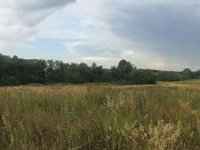 Земельный участок 100 соток, 25 км от МКАД, г. Апрелевка
