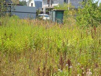 Земельный участок 10 сотка, 14 км от МКАД, д. Толстопальцево