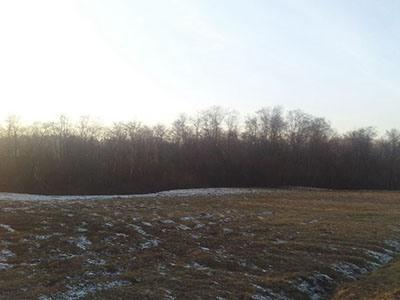 Земельный участок 45 соток, 10 км от МКАД, д. Староселье