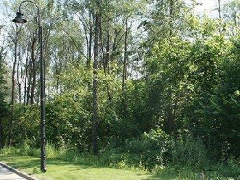 Земельный участок 18 соток, 9 км от МКАД, д. Летово