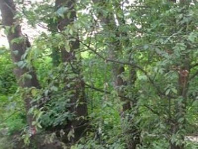 Земельный участок 17,5 соток, 39 км от МКАД, д. Глаголево
