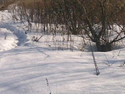 Земельный участок 15 соток, 30 км от МКАД, д. Хлопово