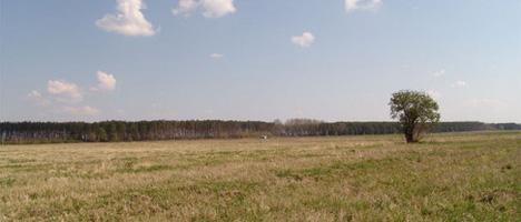 Срок договора аренды земельного участка под строительство